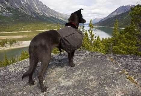 Puppy-Loving Nature Blogs