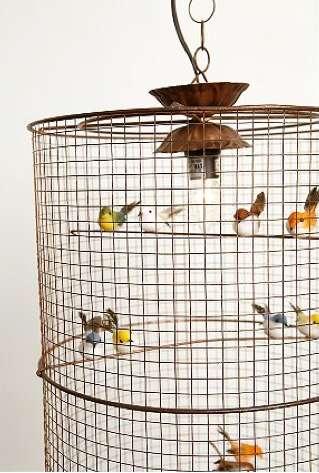 Tweety Bird Lighting