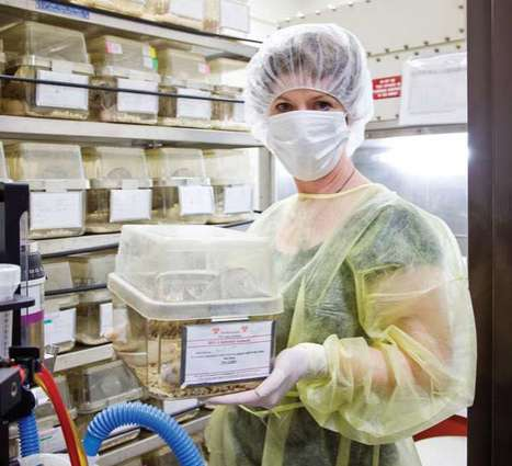 AIDS-Curing Stem Cells