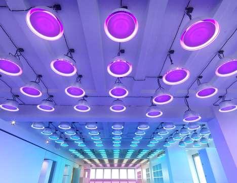 Luminescent Collaboration Art