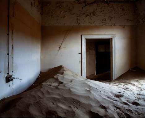 Indoor Desert Photography