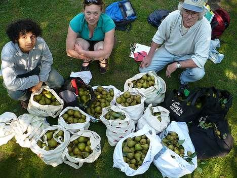 City Fruit-Picking