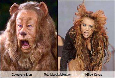 Celeb Twin Spoof Sites - The 'Totally Looks Like' Website Will Guarantee a Few Laughs