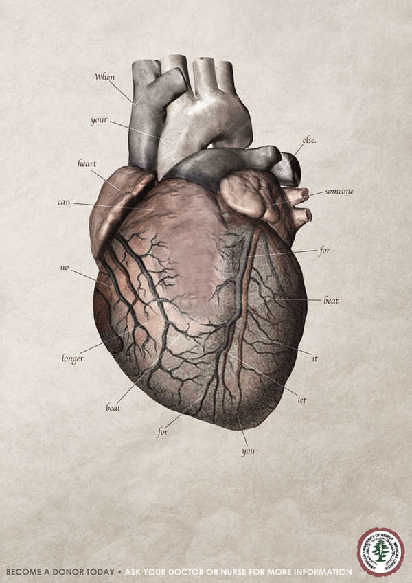 Heartbreaking Anatomy Posters