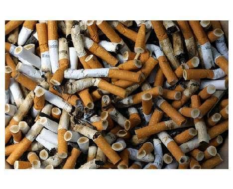 10 Cigarette Butt Creations