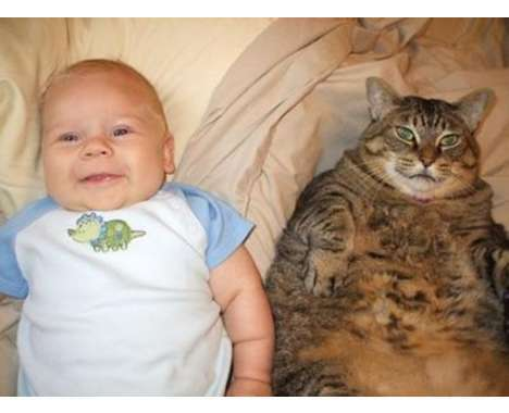 30 Looks at Fat Kids and Fat Pets