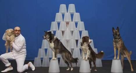 One-Shot Music Videos