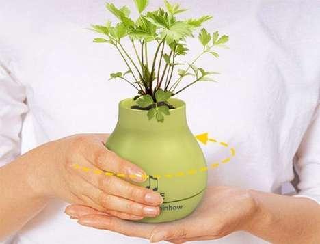 Harmonious Flower Pots