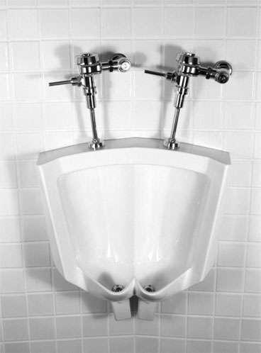 Strange Siamese Urinals