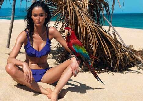 Pet Parrot Lookbooks