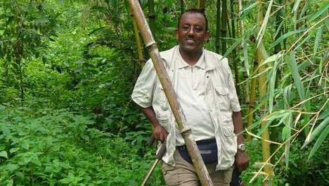 Deforestation Fighters