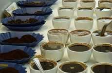 Smallholder Coffee Farmers