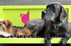 Luxury Pet Retreats - The Sniff Dog Hotel Pampers Your Pooch Hollywood-Style