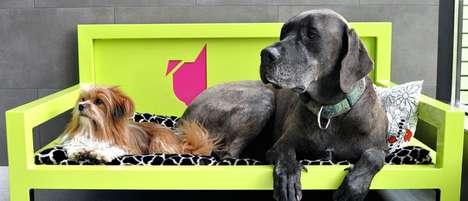 Luxury Pet Retreats