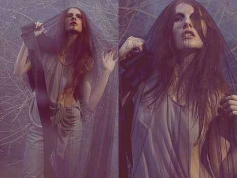 Foggy Veiled Photography