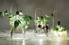 Glass Plant Lights - The Vase & Leuchte by Miriam Aust Acts as a Planter and Lamp
