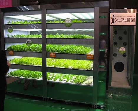 Post-Apocalyptic Vegetable Farms - Lettuce-Growing Vending Machine Produces Sunless Salad Greens
