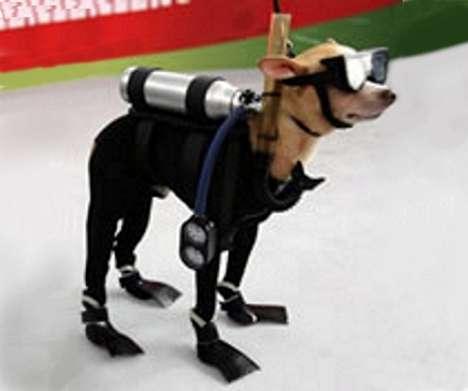 90 Doggone Good Canine Accessories