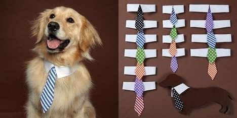 Classy Puppy Collars
