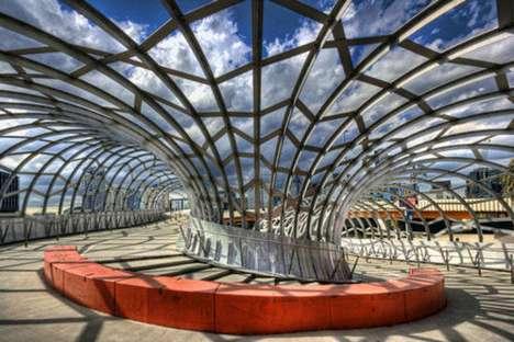 Arachnid-Inspired Architecture