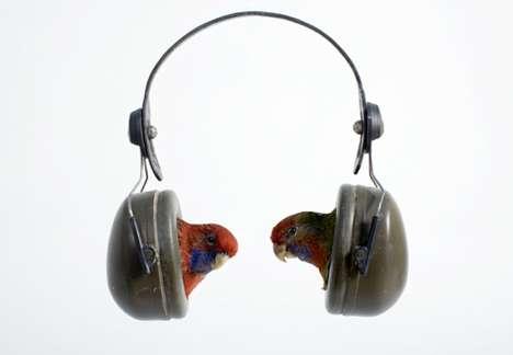 Expired Avian Headsets