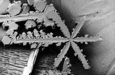 Microscopic Snowflakes