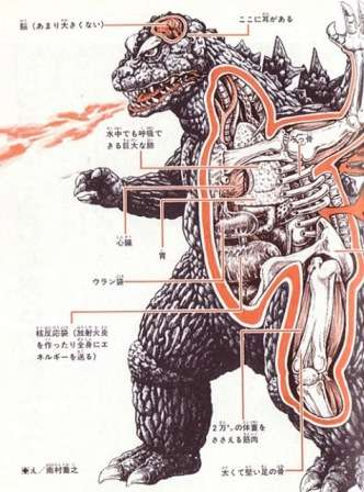 Monstrous Anatomy Guides