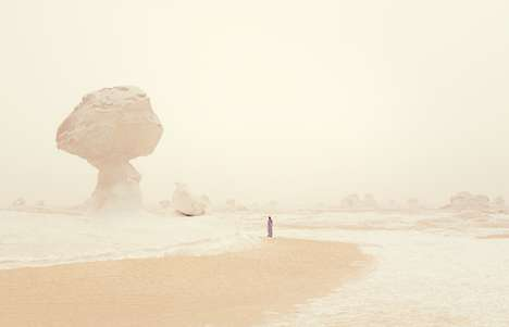 Desolate Desert Photography