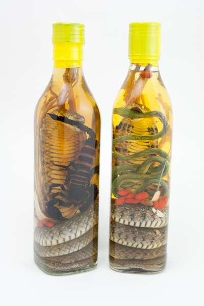 Creepy Crawly Vinos - Shocking Asian Snake Wine From Southeast Asia
