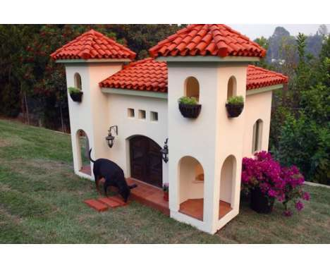 25 Innovative Animal Abodes