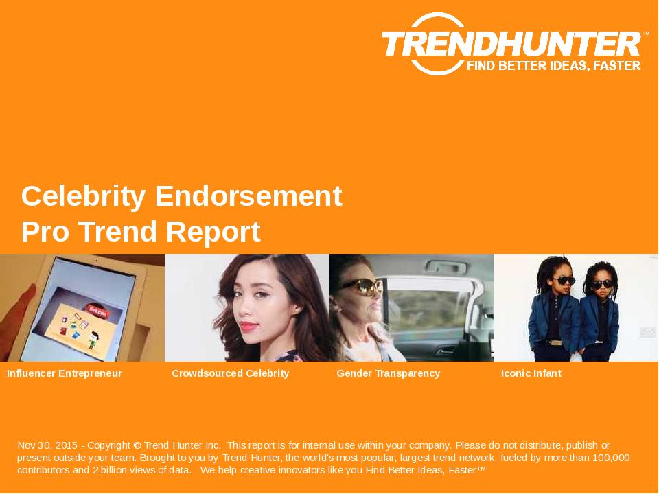 Celebrity Endorsement Trend Report Research