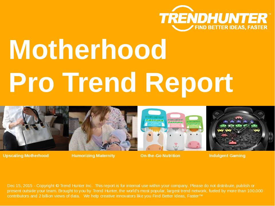 Motherhood Trend Report Research