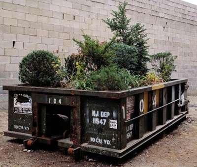 Urban Dumpster Gardening