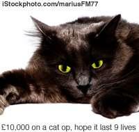 £10,000 Pet Voices