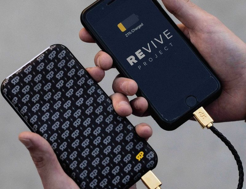 Style-Conscious Backup Batteries