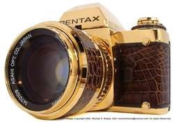 18ct Gold and Leather SLR