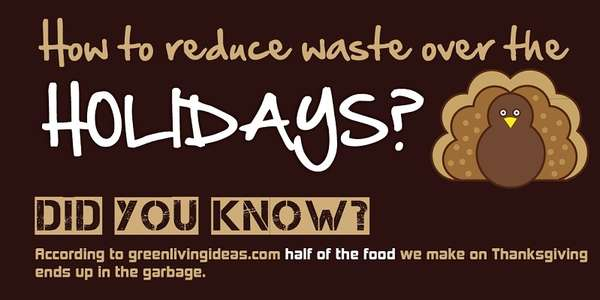 Holiday Waste-Reducing Infographics