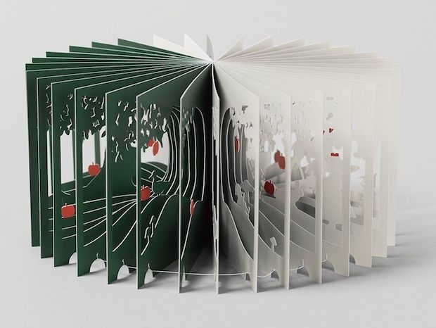 360-Degree Picture Books