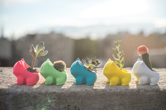 Printed Pokemon Planters