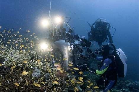 3D Underwater Exploration