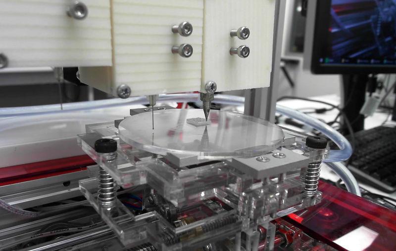 3D-Printed Ears