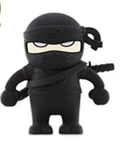 Ninja Memory Sticks