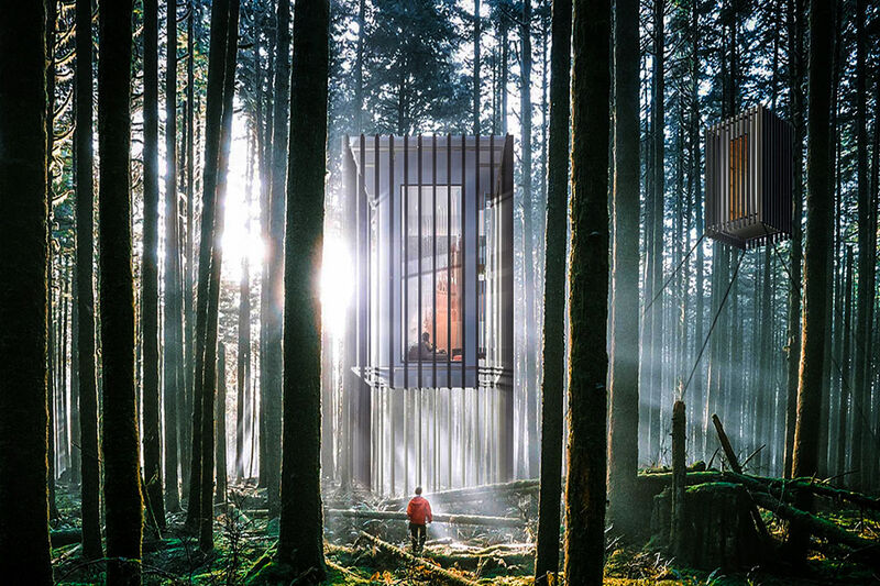 Sustainable Prefab Forest Cabins