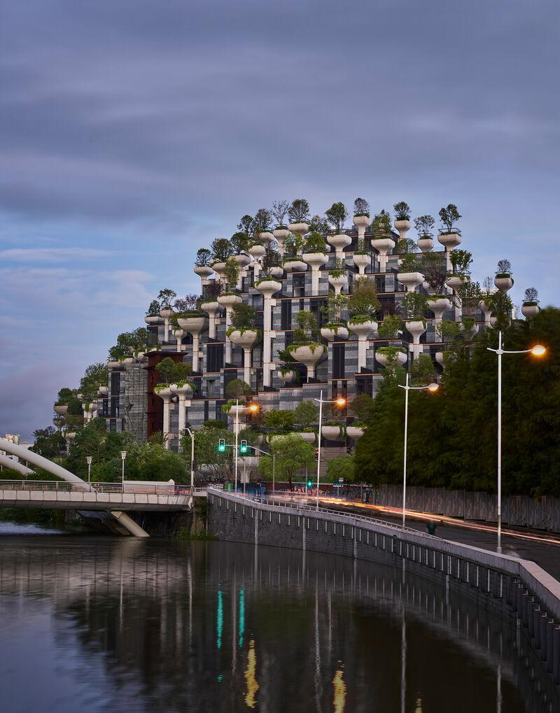 Mountain-Like Tree-Covered Developments