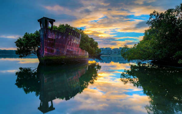Abandoned Ship Gardens