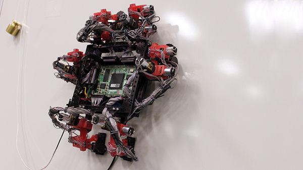 Gecko-Like Robots