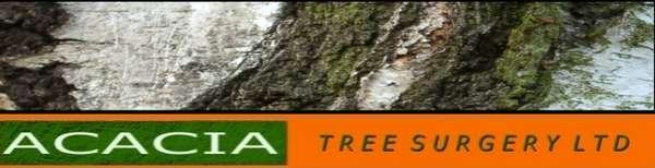 Pruning Preservation Enterprises