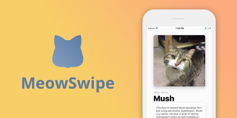 Dating-Inspired Pet Adoption Apps