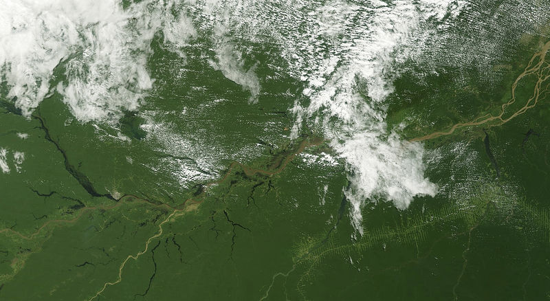 Satellite Deforestation Tracking