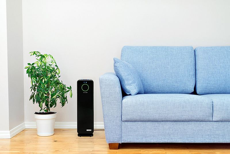 Voice-Enabled Air Purifiers